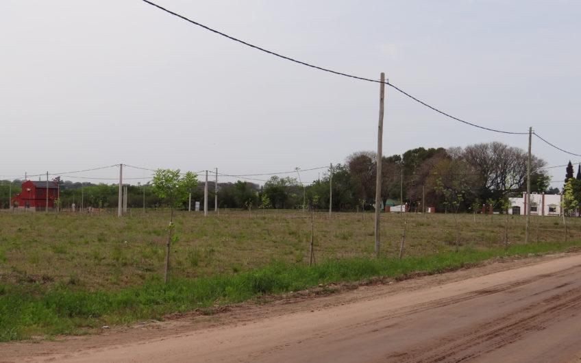 LOTEO Zona Artalaz y Horne.